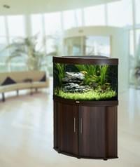 Eck-Aquarium