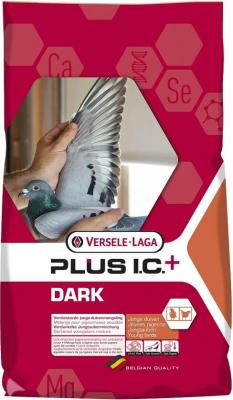 Dark Plus I.C.+   Jeunes pigeons occultés