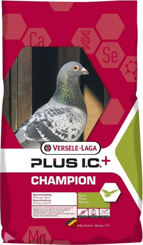 Champion Plus I.C + mezcla muy variada para el deporte