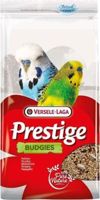Budgies Prestige Perruches ondulées