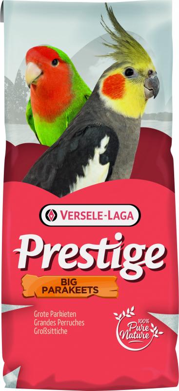 Big Parakeets Prestígio Grandes Periquitos