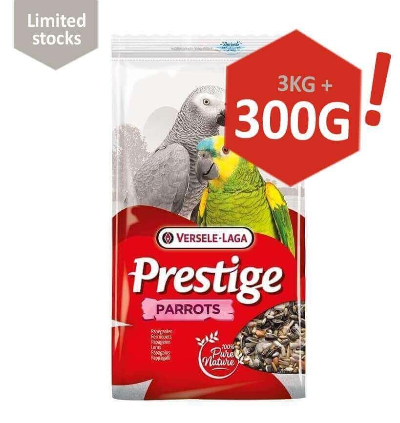 Parrots Prestige Perroquets_0