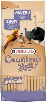 AUSTRU - Oiseaux coureurs (du 1er jour à l'âge adulte)