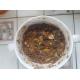 16554_Pet-Pig-Muesli-Country's-Best-Aliment-pour-cochons-vietnamiens-et-cochons-nains_de_Sebastien_19703631676063482d808a94.14788636