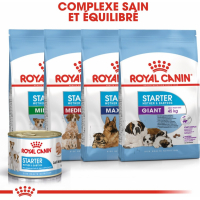 Patè Royal Canin Starter Mousse Mother and Baby Dog