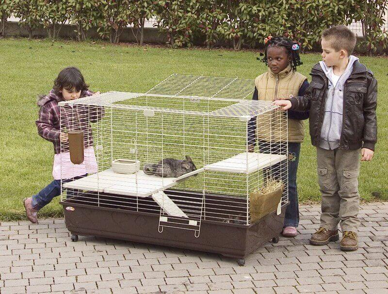 grande cage pour lapin. Black Bedroom Furniture Sets. Home Design Ideas