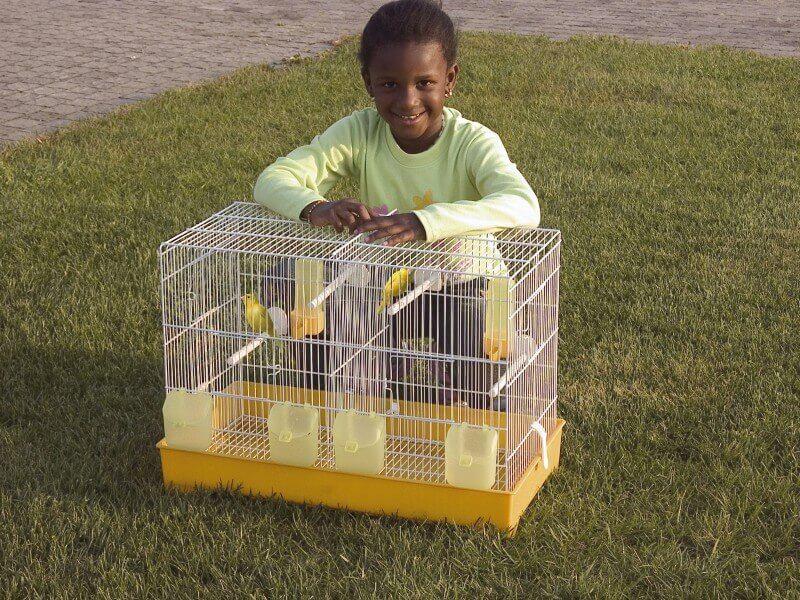 cage double pour canaris et perruches cova 57 cage petits oiseaux. Black Bedroom Furniture Sets. Home Design Ideas