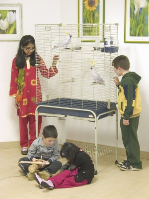 Cage pour perruches PAROS 82 bleue + support à roulettes
