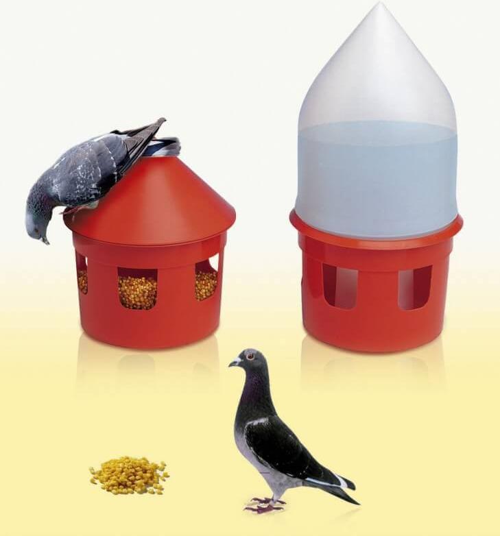 Mangeoire et siphon rouge pour pigeons LOCRI