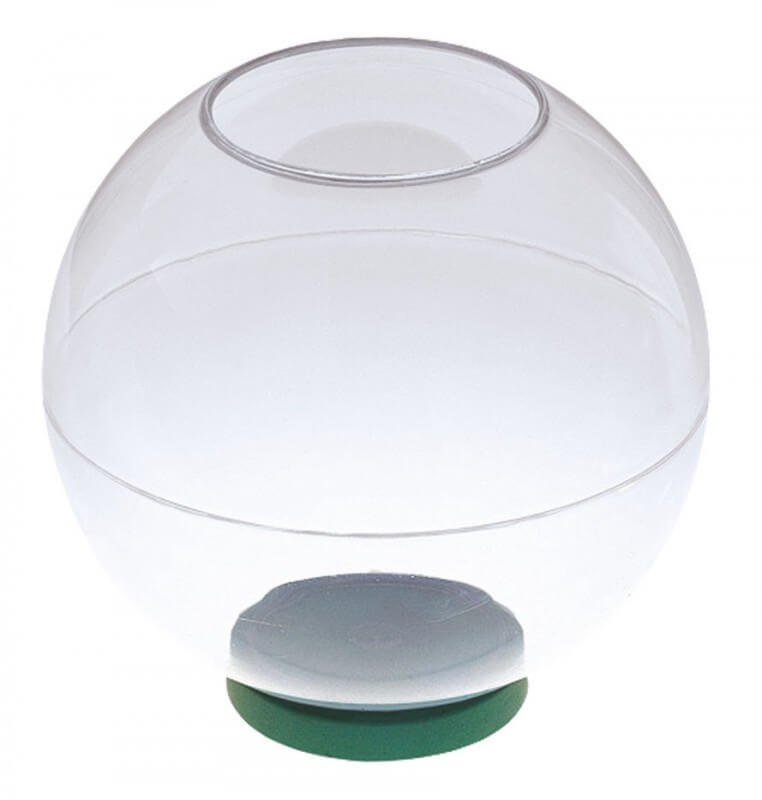 Aquarium boule pour poissons boccia aquarium et meuble for Poisson aquarium boule