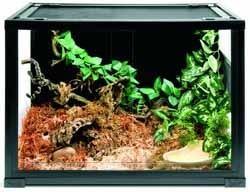 terrarium pour tortue terrestre pas cher. Black Bedroom Furniture Sets. Home Design Ideas