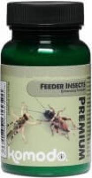 Komodo Premium Fórmula Fortificante 75g - Fórmula para insectos