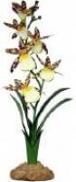 Komodo orchidée araignée 40cm - Plante artificielle pour terrarium