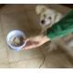 17133_Patè-Belcando-Single-Protein-per-cani-adulti---6-gusti-a-scelta_de_Maria Chiara_20007747465f3ef686a1fb44.99511950