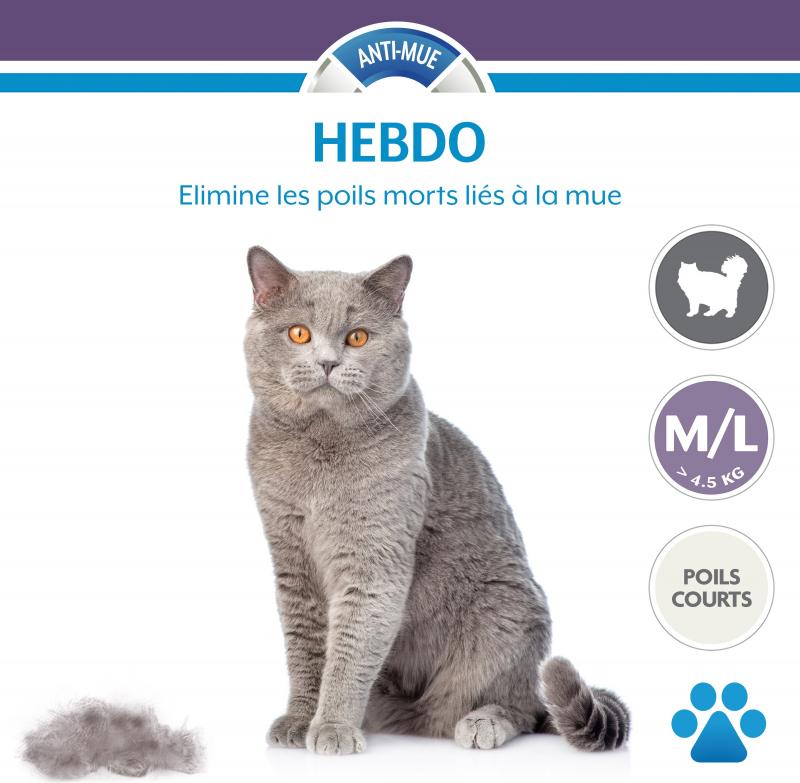 perdita di peso per gatti uk
