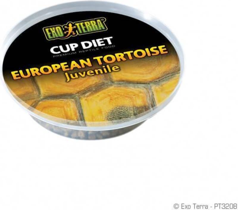 Cup Diet Exo-Terra pour Pogona 6 rations journalières