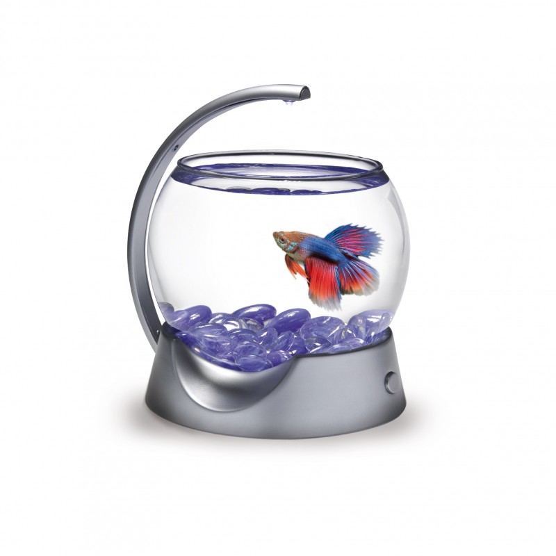 Tetra betta bowl 1 8l aquarium design et compact adapt for Aquarium boule en verre