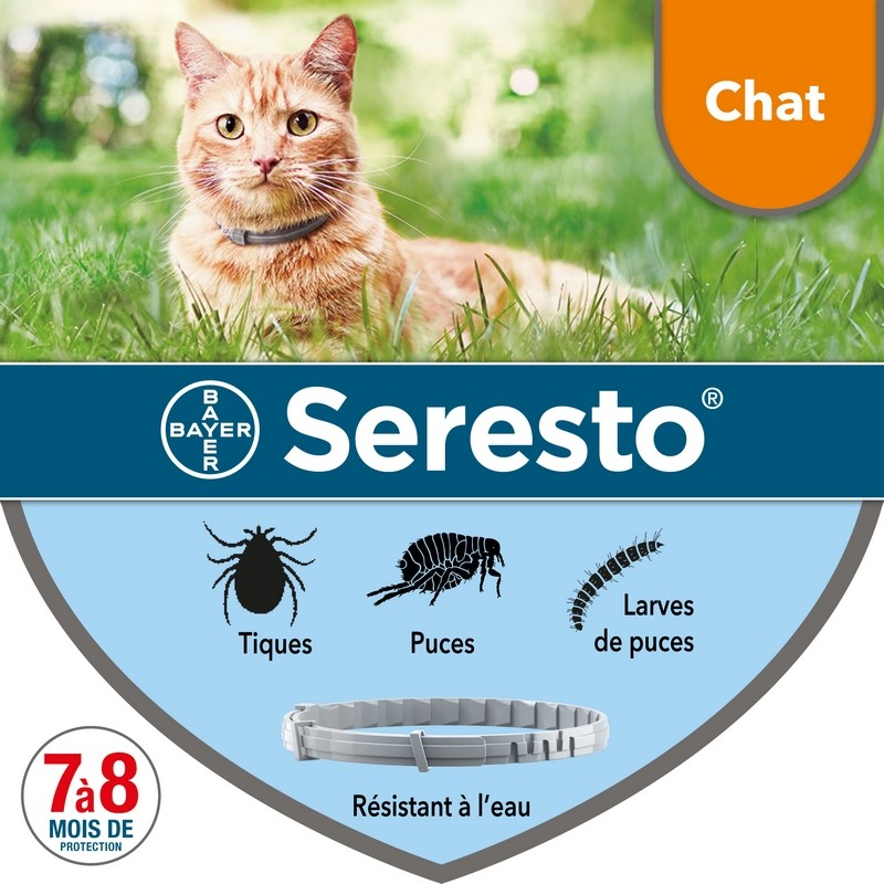 Seresto Collier anti-parasitaire chat