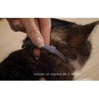 Seresto Collier anti-parasitaire chat