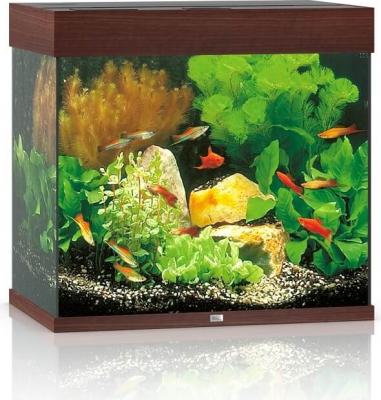 JUWEL Aquarium LIDO 120 LED bois foncé