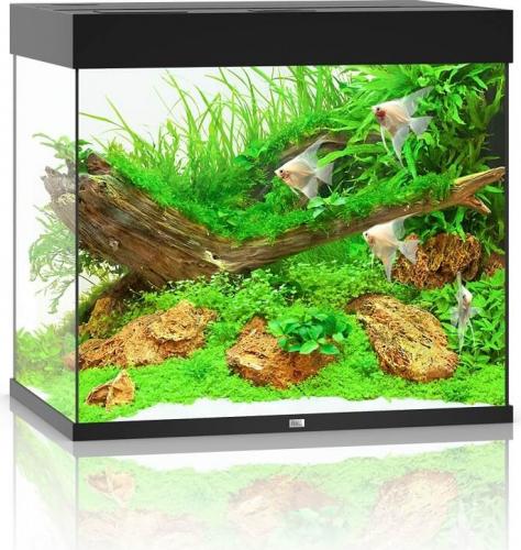 JUWEL Aquarium LIDO 200 LED Noir