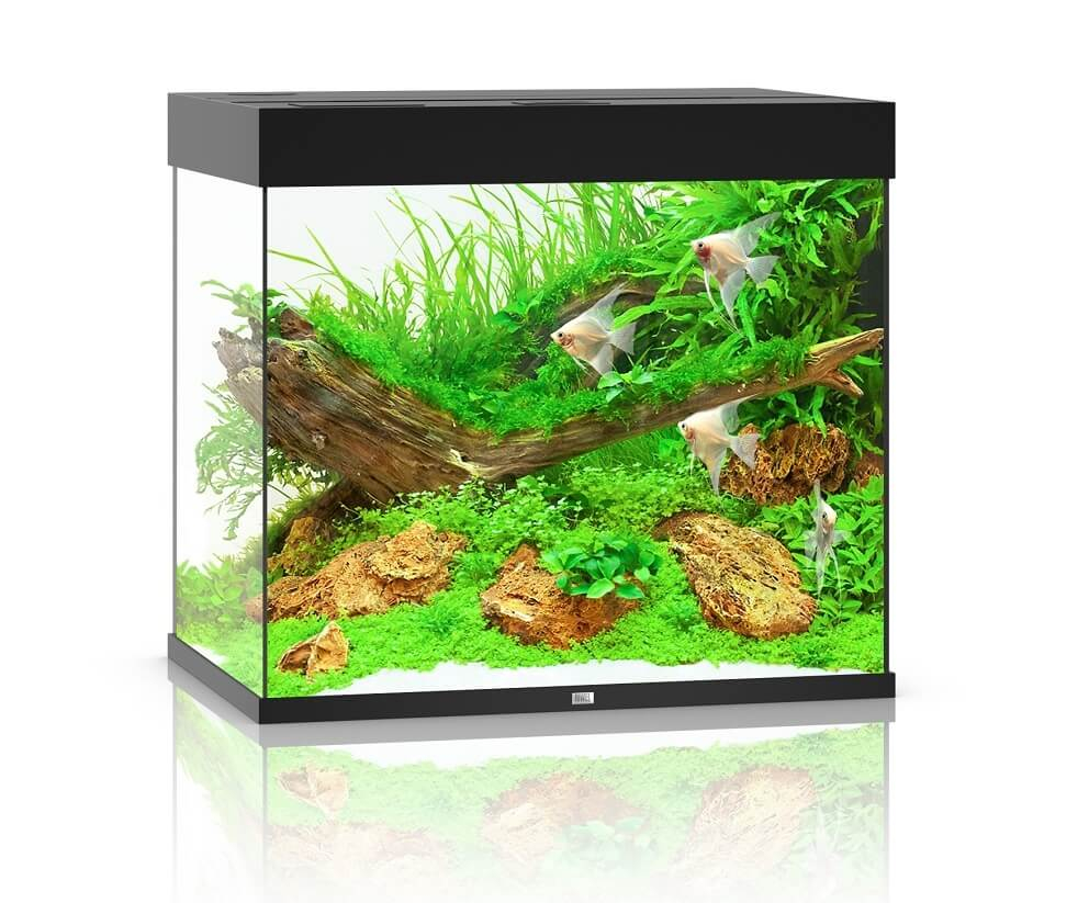 juwel aquarium lido 200 led noir aquarium et meuble. Black Bedroom Furniture Sets. Home Design Ideas