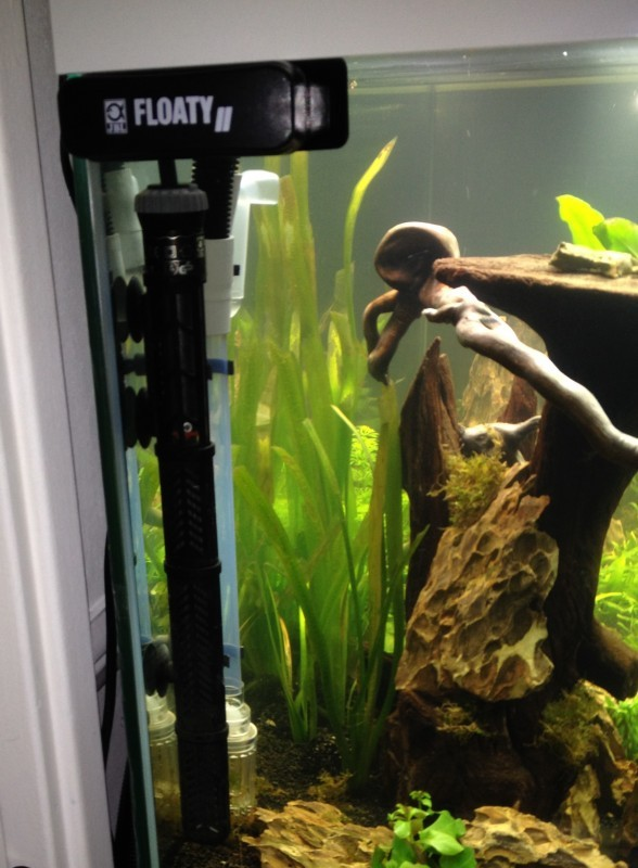 chauffage pour aquarium prix