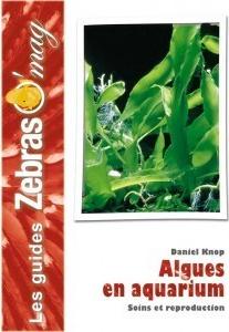 """""""Algues en aquarium"""", Daniel Knop"""