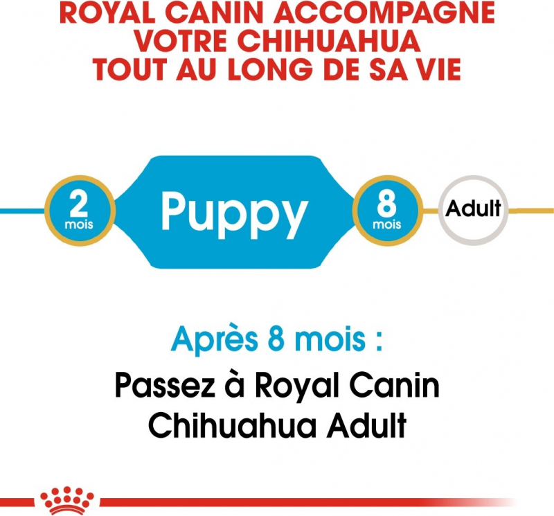 Royal Canin Breed Chihuahua Junior