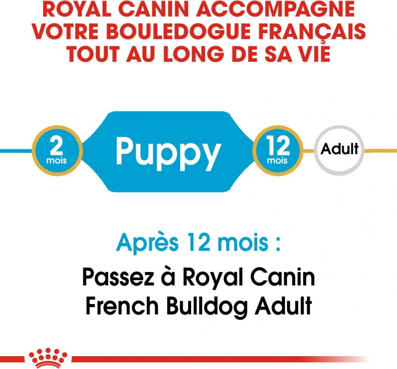 Royal Canin Bulldog Francés 30 Junior