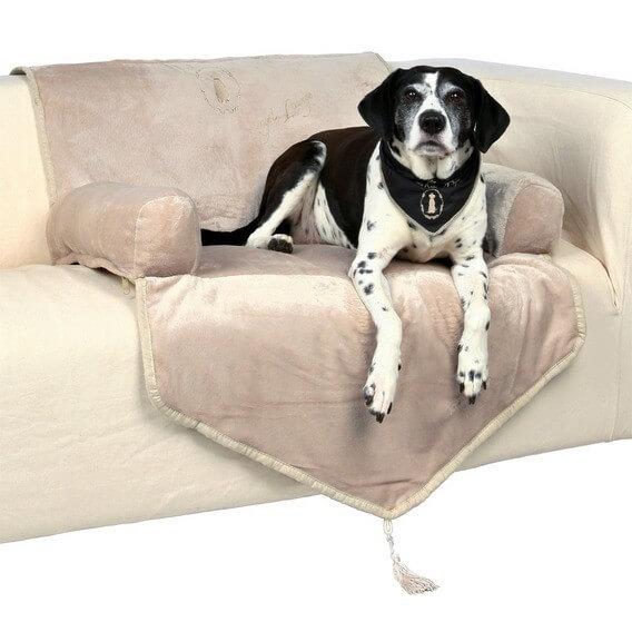 king of dogs si ge chien pour sofa 70 200 cm beige ou noire coussin et tapis chien. Black Bedroom Furniture Sets. Home Design Ideas