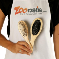 Brosse double face 2 tailles