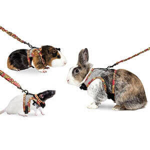 Small Pet Harness_2