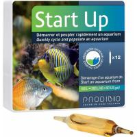 Prodibio Start Up Démarrage pour aquarium