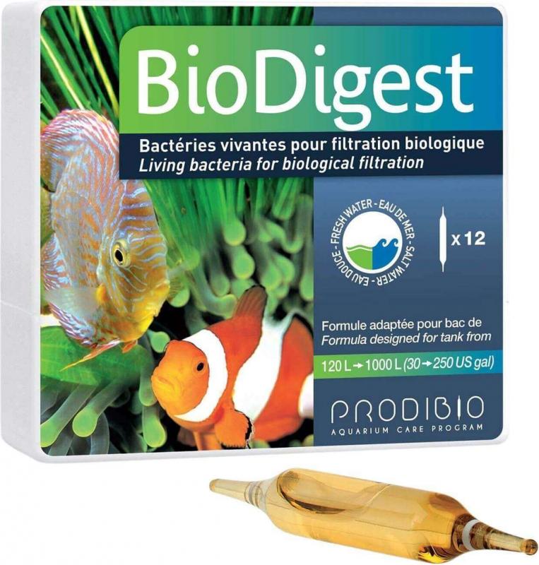 Prodibio BioDigest Bactéries dénitrifiantes pour aquarium