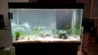 Substrat-naturel-pour-aquarium---Manado_de_aurelie_140854713655ec975c402e49.01279455