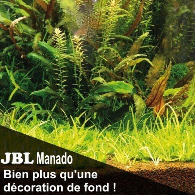JBL Manado Substrat naturel pour aquarium