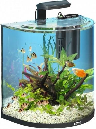 30L Tetra AquaArt Explorer Line aquarium set - Goldfish