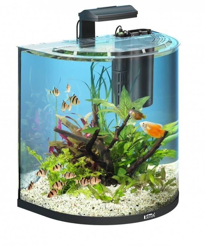 30L Tetra AquaArt Explorer Line aquarium set - Goldfish_1