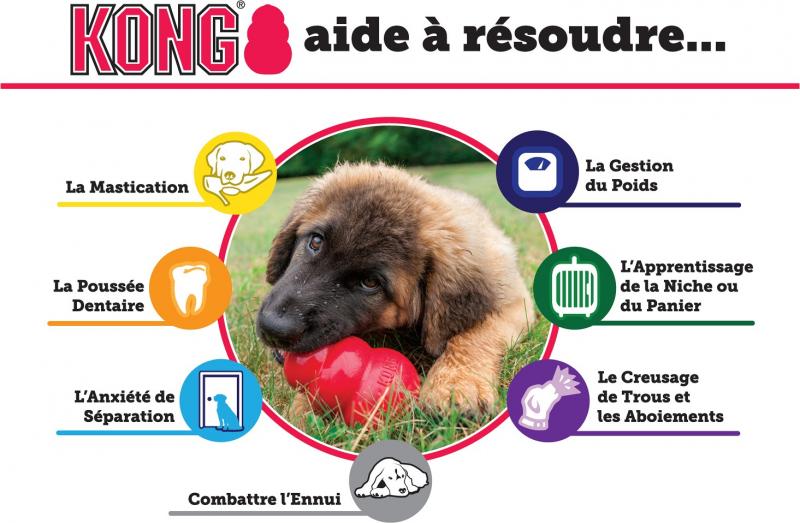 Jouet KONG chien Extreme 5 tailles - caoutchouc dur pour chiens adultes énergiques