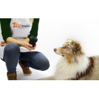 Gioco KONG cani Extreme 5 taglie - caucciù duro per cani adulti energici