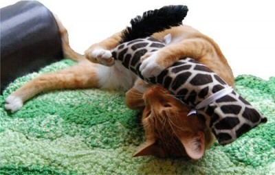 KONG Kickeroo in braun mit Motiven - Spielzeug mit Katzenminze