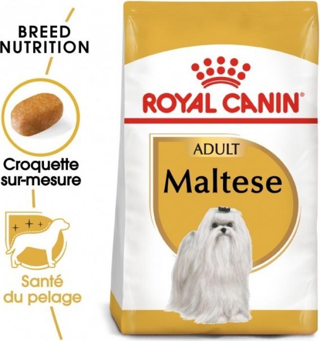 Royal Canin Breed Bichon Maltais Adult