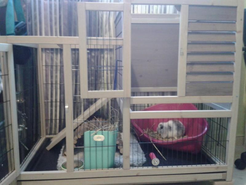 clapier d 39 int rieur restland cage lapin clapier lapin. Black Bedroom Furniture Sets. Home Design Ideas