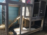 Clapier-d'interieur-RESTLAND---cage-a-lapin_de_Julie_12929800605cd83e43e1e456.94194720