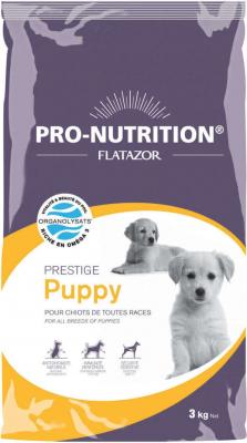 Flatazor Prestige Puppy