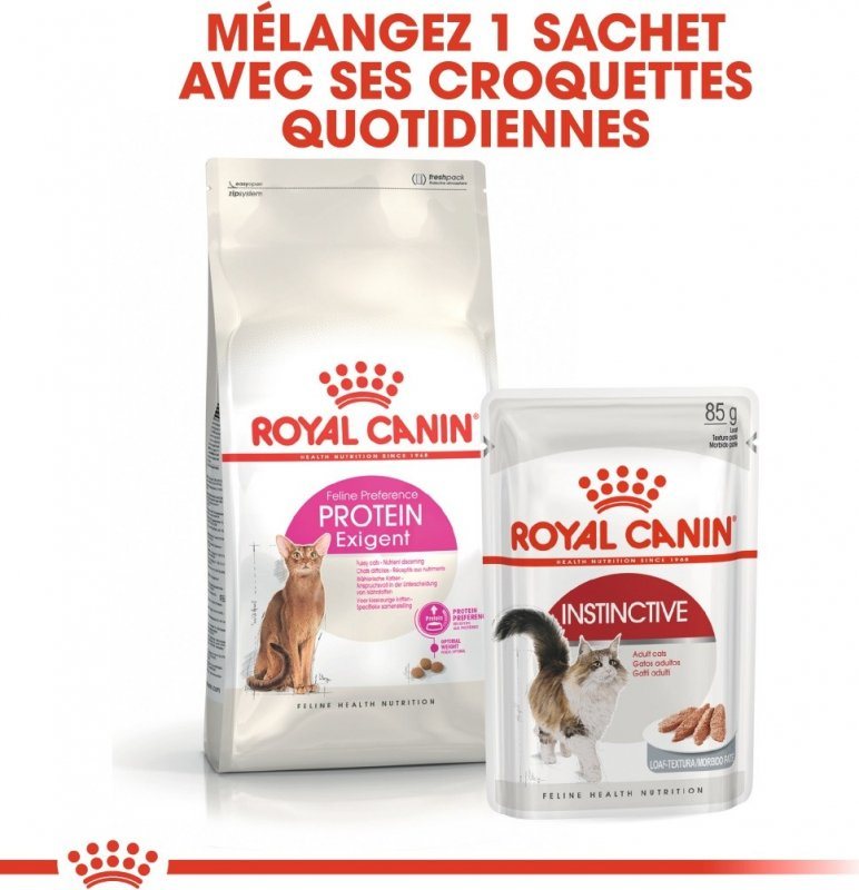 Royal Canin Protein Exigent pour Chat Adulte Difficile