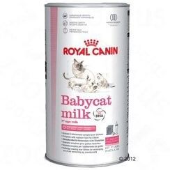 Babycat Milk_0