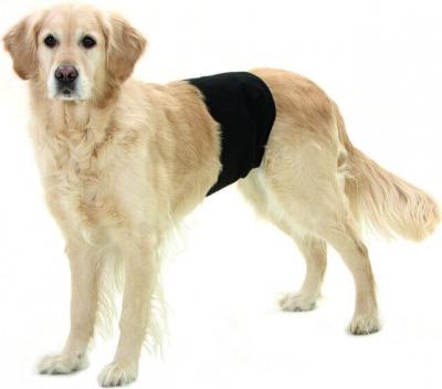 Gentleman Wraps Plus - Pantalon de protection pour chiens