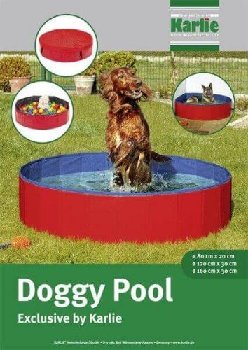 Piscine pour chien doggy pool jouet pour chien for Piscina perros